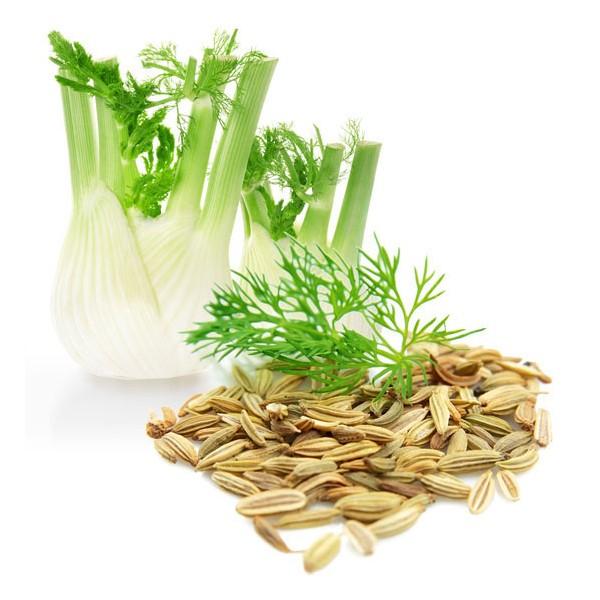 semillas-de-hinojo