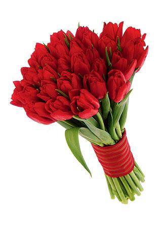 bonito-bouquet-de-20-tulipanes-rojos-550-pesos